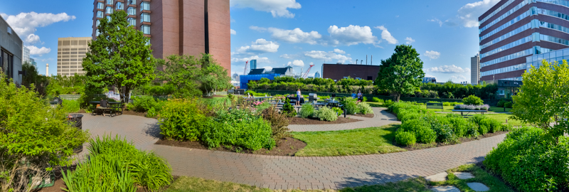 Kendall Square Roof Garden